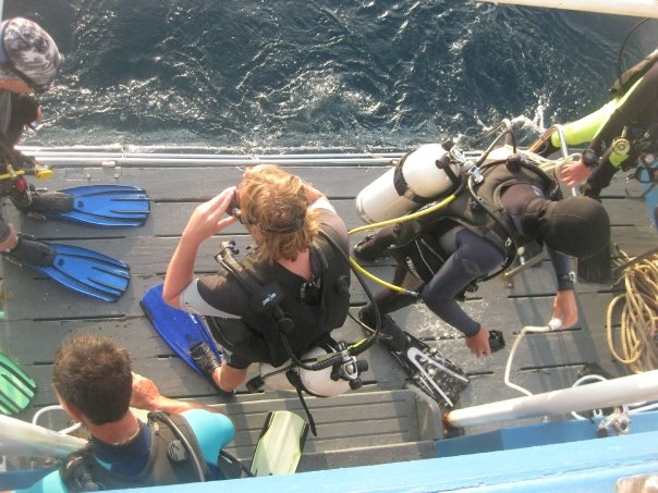 Before a Dive