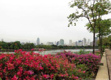 Benjakitti Park, Bangkok